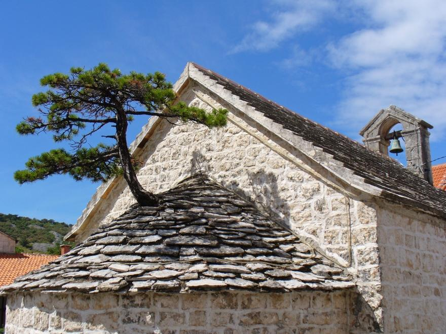 Island of Brač tour from Split